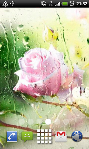 Carnation Water Drops LWP