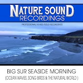 Big Sur Seaside Morning (Ocean Waves, Song Birds & The Natural World)