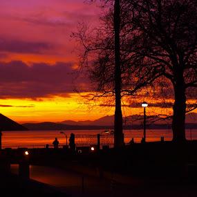 Rare Seattle by Vanessa Latrimurti - Landscapes Sunsets & Sunrises ( orange, seattle, cascades, vibrant, pike place market )