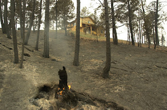 Photo: Hayman Fire South. Pikes Peak Resort on 160 acres surounded by Pike National forest.  Main home survives with the help of pre-treament and bucket drops.  2 guest houses and most trees were lost.