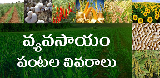 Vyavasayam Telugu Agriculture - Apps on Google Play