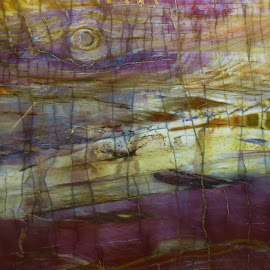 by Denise O'Hern - Nature Up Close Rock & Stone