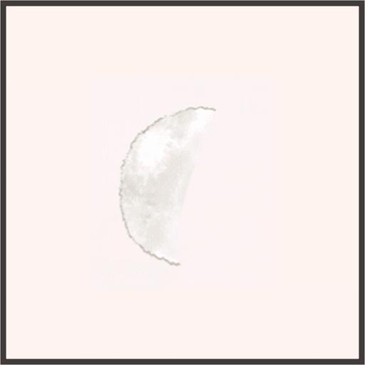 うさぎのしっぽ
