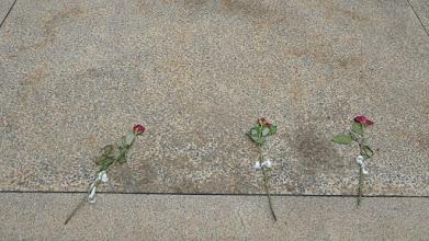 Photo: Kukkia neljännesmiljoonan ruandalaisen haudalla