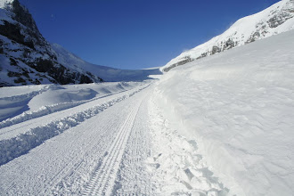 Photo: The highway to the Columbia Icefield.