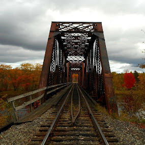 by Sandy Davis DePina - Transportation Railway Tracks ( foliage, fall, train, tracks,  )