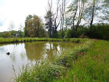 terrain à Heimersdorf (68)