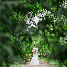 Wedding photographer Nataliya Dovgenko (Dovgenkophoto). Photo of 28.11.2017