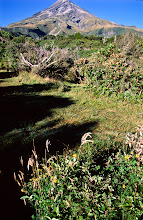 Photo: Mt. Taranaki