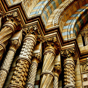 Gold columns by Alka Smile - Buildings & Architecture Architectural Detail (  )