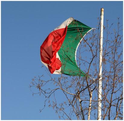 ITALIA AL VENTO di dicorsa