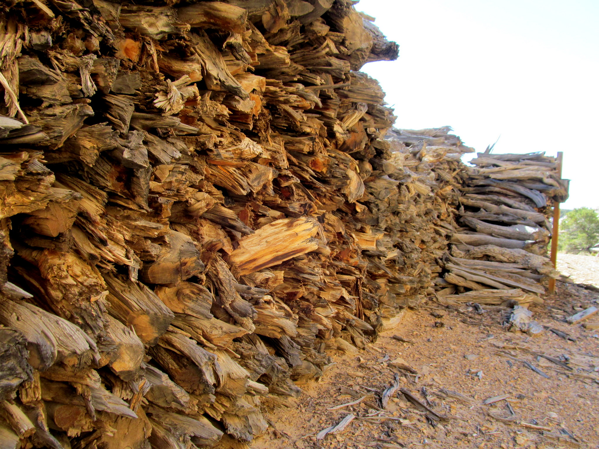 Photo: Wood pile at Copper Globe