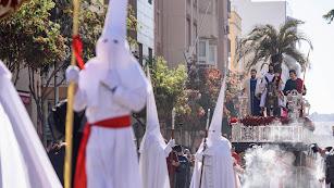 Procesión de La Borriquita de la capital. /Fotos: Juan Sánchez