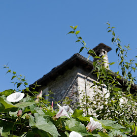 Ticino, Rasa - Intragna, Switzerland by Serguei Ouklonski - Buildings & Architecture Other Exteriors ( mountain, outdoors, european alps, nature, hiking, landscape, scenics )