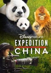 Disneynature Expedition China