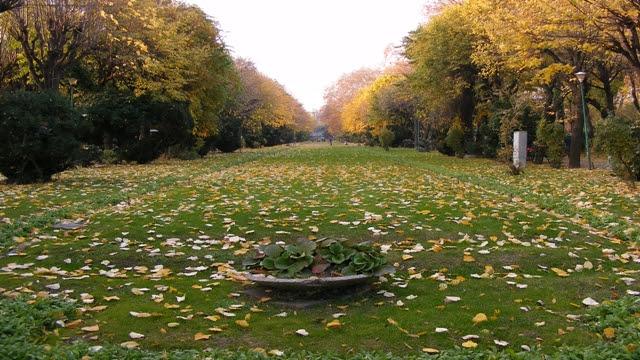 Park Cismigiu Bucharest