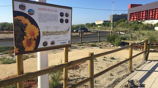 UAL, una de las universidades más sostenibles de España