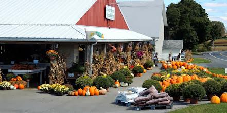 Photo: Farm Stand