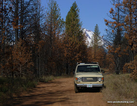 Photo: The Cruiser at home in the woods; North Sister in the background. Rooster Rock Burn.