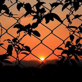 by Yoga Novariansyah - Landscapes Sunsets & Sunrises