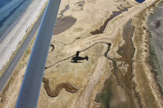 Photo: Airplane shadow over marshy spit