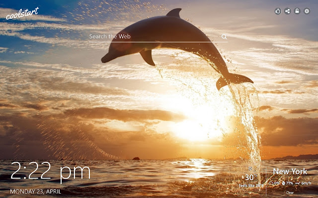 Dolphins HD Wallpapers Animals New Tab Theme
