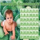 Календарь беременности 2015