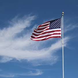 American Flag by Natasha Sanders - Public Holidays July 4th ( sky, flag, american )