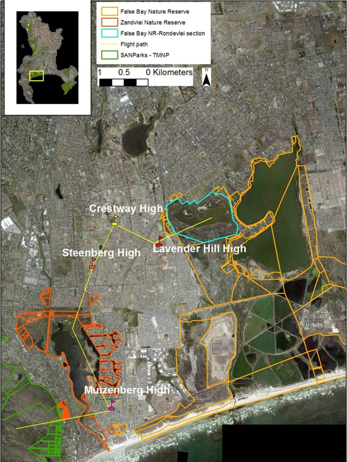 A map showing where the bird filling stations will be. The location of the four high schools where the project is already underway (flags), linked by a hypothetical migration corridor (yellow line) connecting Muizenberg Mountain (bottom left) with Rondevlei Nature Reserve (top right).