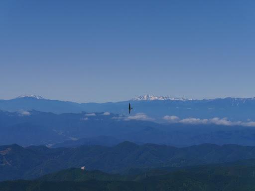 木曽御嶽山や乗鞍岳とツバメ