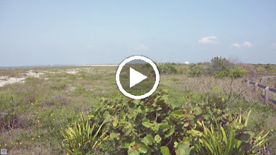 Video: Good bit of wind on the open cape as well.  Most of the vegetation is recent infestation.  Fires once kept it more open.  Today, we don't like fires too much.