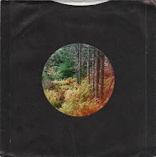 Photo: Burnt Woods