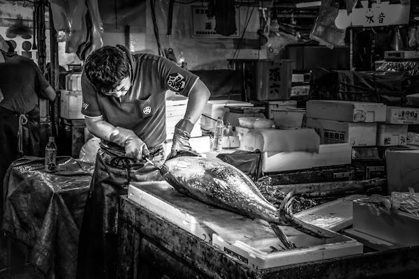 Mercato del pesce di VIC61
