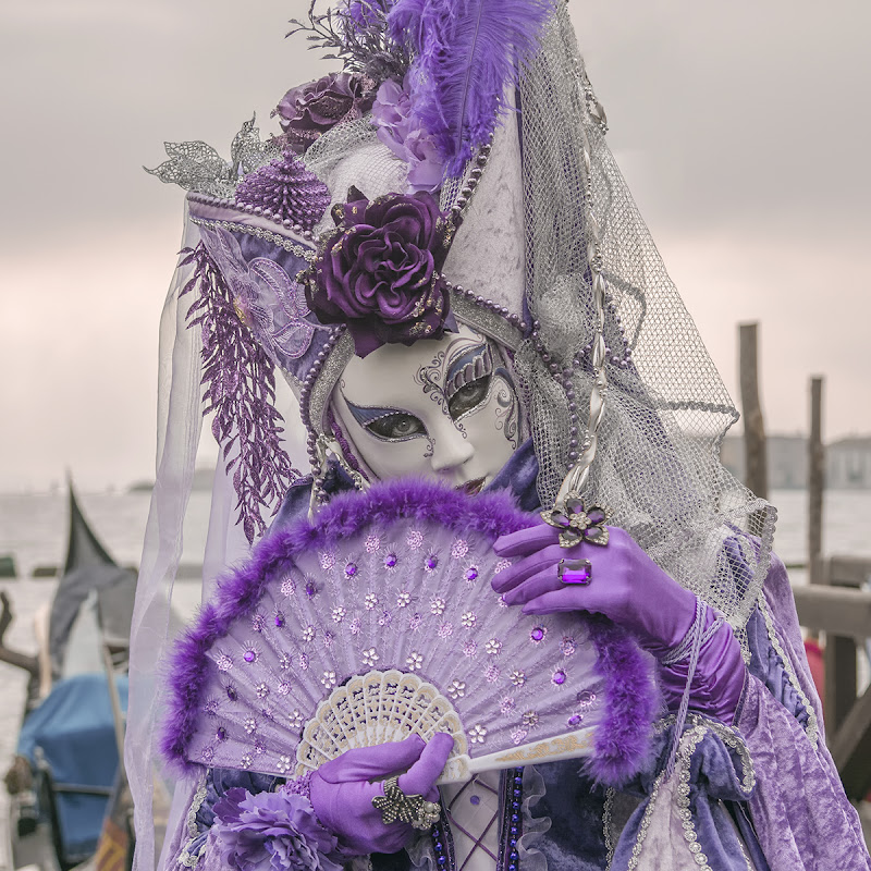 Violet in Venice di Sabrina Scanu