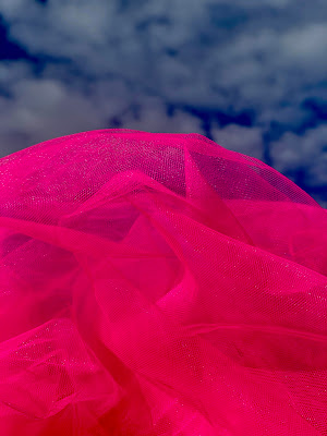 Nuvoletta  rosa di paola_fusani