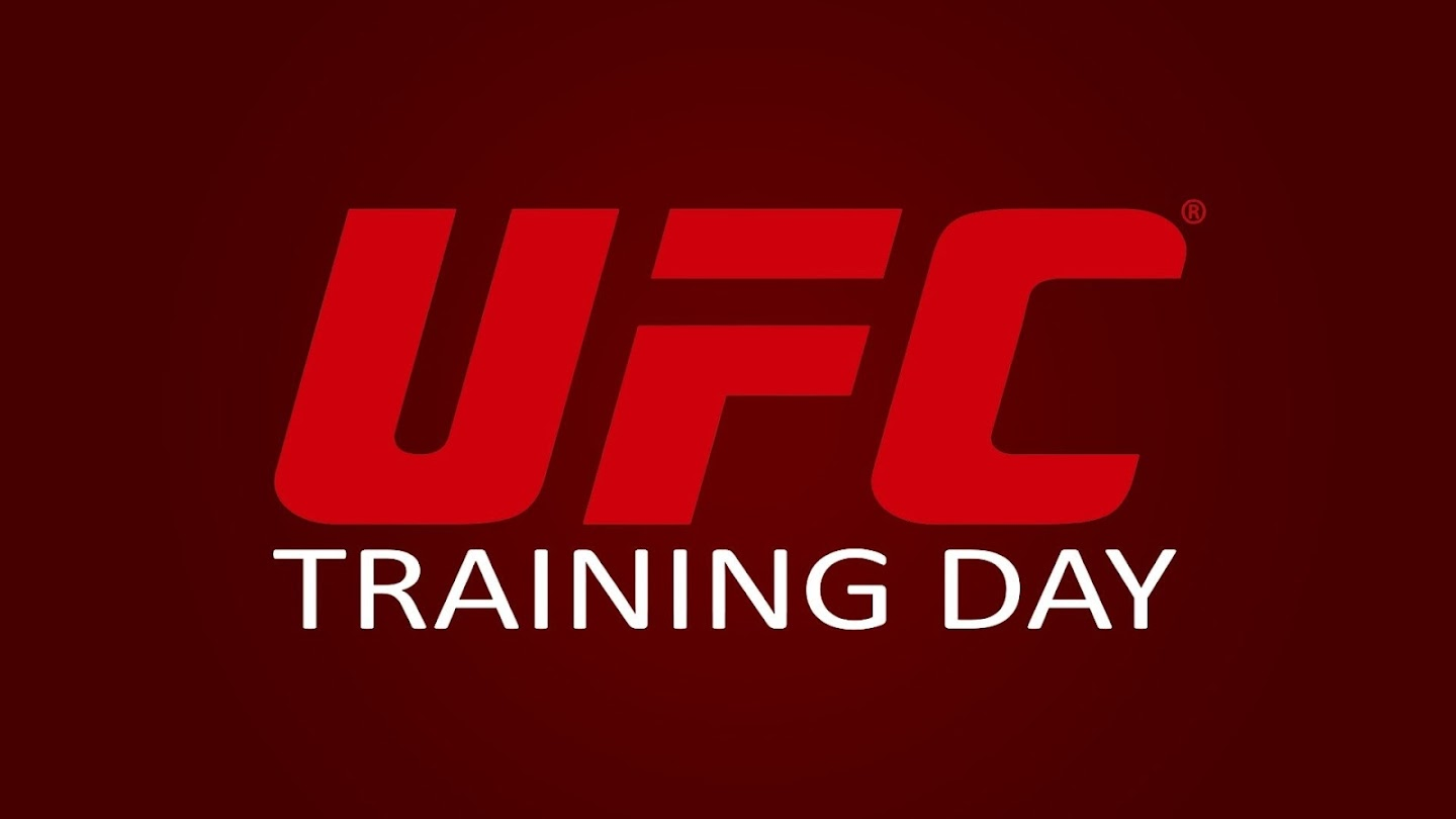 UFC Training Day