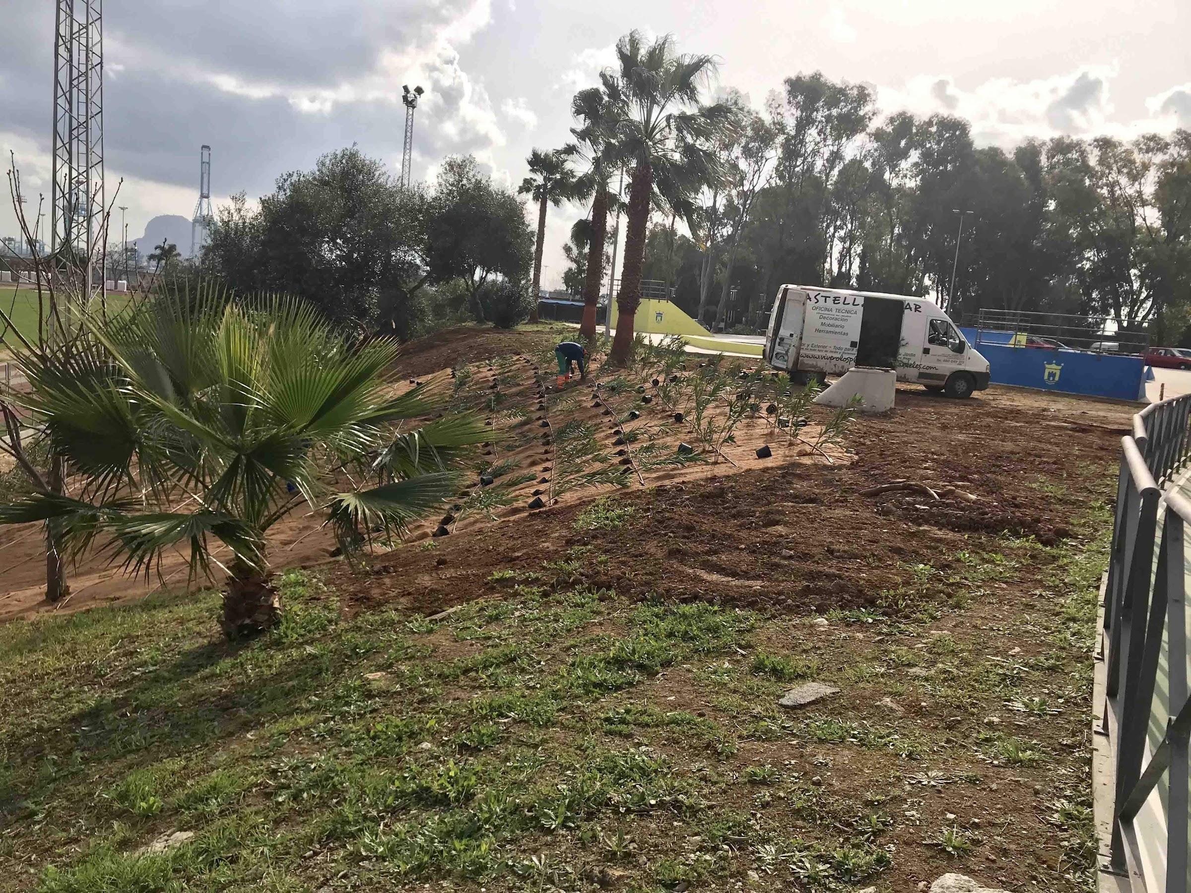 Parques y Jardines comienza un plan de ajardinamiento de taludes