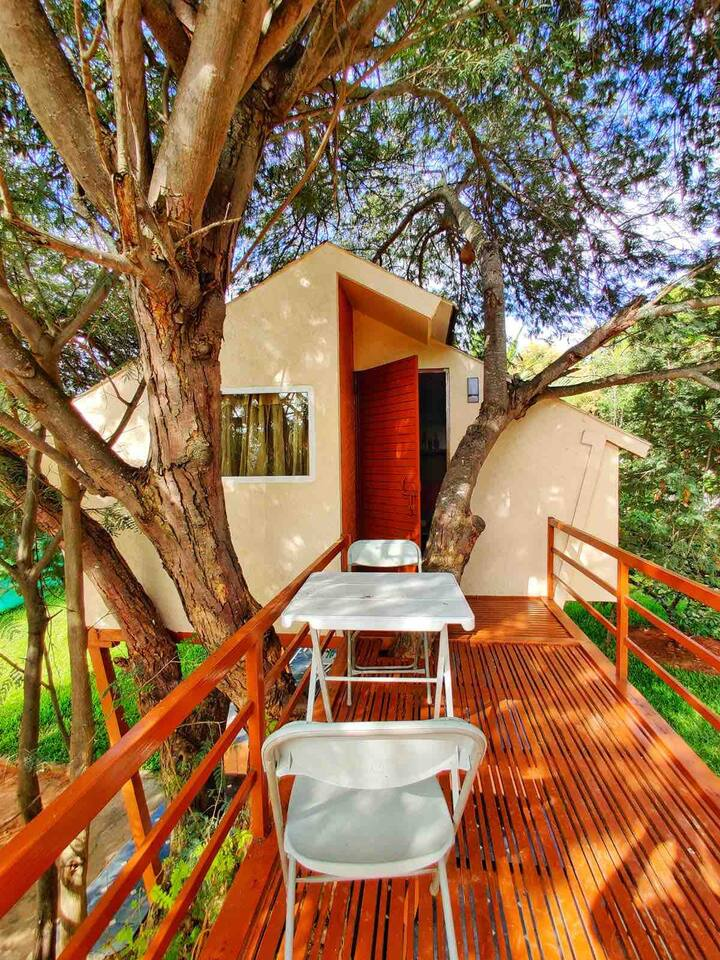 romantic-staycation-properties-bangalore_treehouse_sarjapur