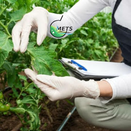 Fertilizer Analysis and Testing Laboratories in UAE by Middle East Testing Services L.L.C - People Group/Corporate ( fertilizer analysis and testing laboratories, testing labs in uae, fertiliser testing in ajman )