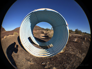 Photo: Hanging Round,iPhone 5S.