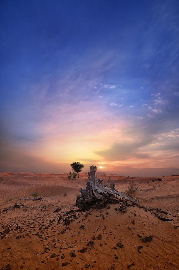 DESOLATE PLACE AT SHARJAH by EUGENE CAASI - Landscapes Deserts