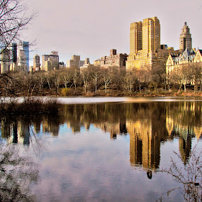 Central Park by Fabio Ferraro - City,  Street & Park  City Parks ( park, manhattan, new york, central park, ny )