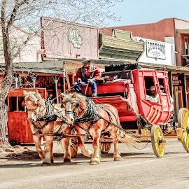 Stagecoach by Richard Michael Lingo - City,  Street & Park  Historic Districts ( tombstone, city, arizona, street, stagecoach,  )