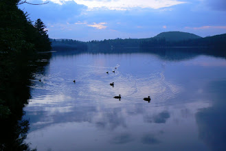 Photo: Dusk at Ricker Pond State Park by Linda Carlsen-Sperry.