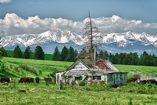 Photo: Old Homestead with the Bridger Mountains in the background.