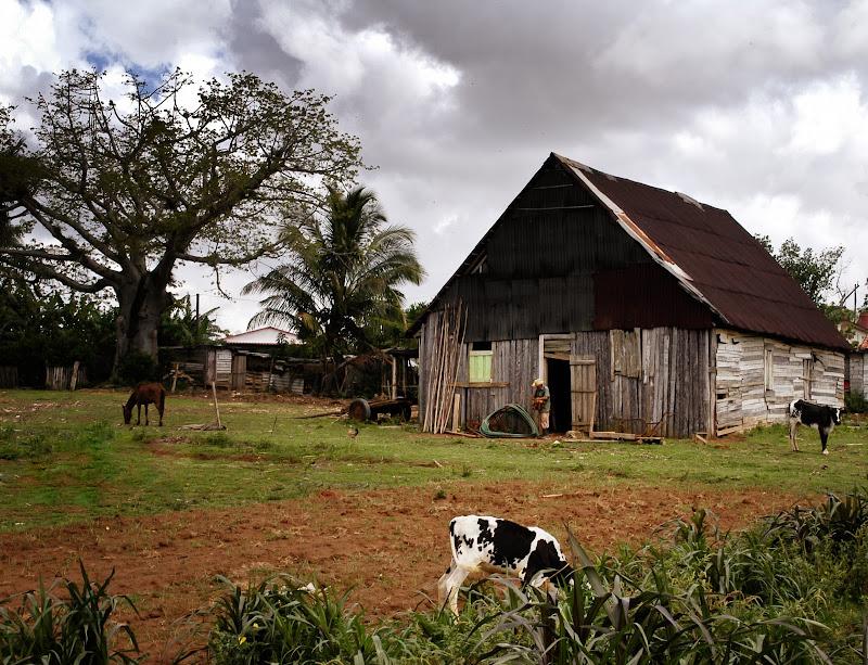 Il capanno del contadino di alessandrocastellani