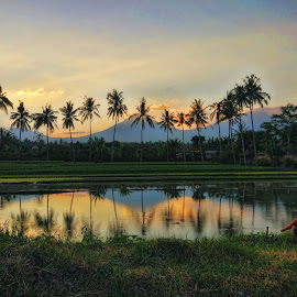 Sunset Reflection by Randi Pratama M - Instagram & Mobile Android ( mountain, reflection, sunset, tree, indonesia,  )