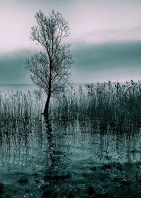 Piccolo guardiano del lago  . . . di Hanami