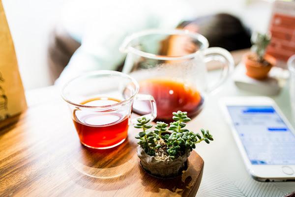 coffee sind 台北大安–存在是為了療癒/有肉 Succulent店中店