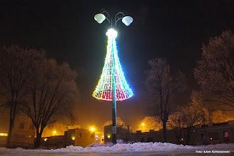 Photo: Święta Bożego Narodzenia 2014 - choinka w Parku Miejskim